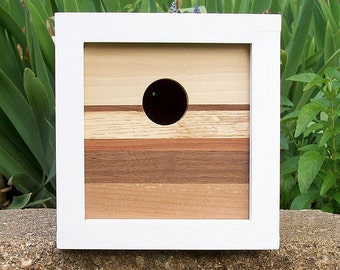 Modern Contemporary Reclaimed Wood Birdhouse - Nest Box - 6 Species of Wood