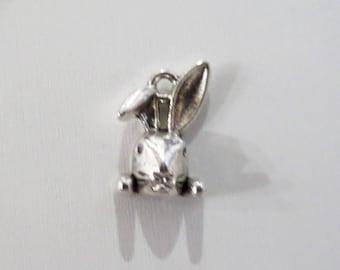 15mm. 10CT Bunny Charms Antique Silver Tone , Y50