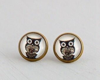 Owl Earrings .. bird, owl studs, post earrings, rustic, small earrings