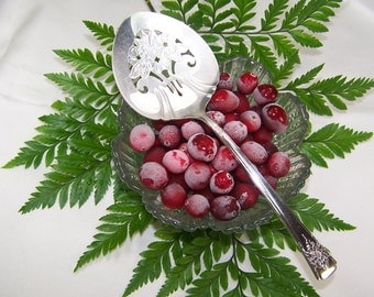 TOMATO Server, CRANBERRY Server, Tomatoes, Cranberries, Holiday Canape Server, Vintage Silver Plated, Mountain Rose by Rogers, 1954,Under 20