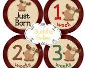 Set of 20 Moose Baby Month Stickers Red Buffalo Plaid Lumberjack Baby Monthly Stickers Month Baby Sticker Rustic Nursery Woodland Baby Decal