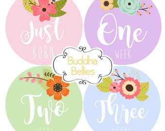 Floral Baby Girl 16 Stickers- Newborn and Monthly Stickers -Just Born Floral Month Stickers - Monthly Baby Stickers - Baby Girl Stickers
