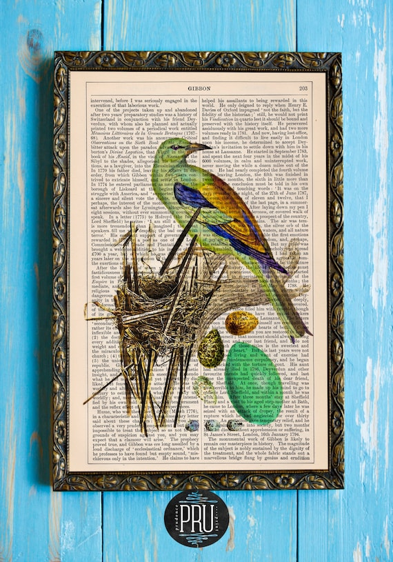 A Bird and Her Nest Original Collage Art Print on an Antique Unframed Upcycled Bookpage