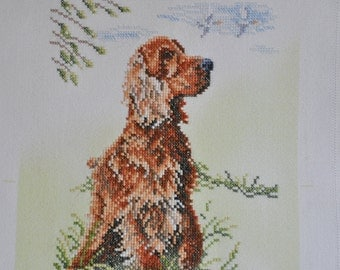 Finished / Completed Cross Stitch -Lanarte Cocker Spaniel (34576) crossstitch counted cross stitch