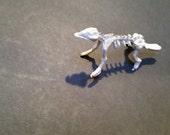 """Teeny Miniature 1"""" Dog Skeleton"""