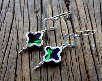 Real butterfly wing earrings - sterling silver butterfly wing earrings -butterfly wings jewelry- Black and green wings- quartrefoil shape