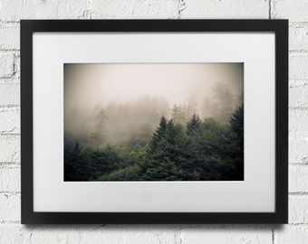 Photograph or Canvas of Forest Trees in Fog and Mist at Ecola State Park in Oregon, Landscape, Foggy Fine Art Photography and Home Decor