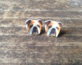 Bulldog earrings jewelry pet dog bull dog post stud animal