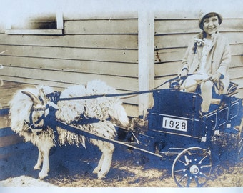 Little Girl in Traveling Goat Cart Antique Photo 1928