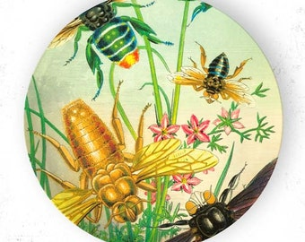 Insects III and bees melamine plate