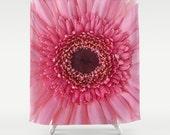 Pink Gerbera Daisy Shower Curtain, Bath Decor, Shower Curtain, Bath Curtain, Flower, Floral, Garden, Fine Art Photography