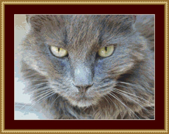The Look Of A Cat Cross Stitch Pattern /Digital PDF Files /Instant downloadable
