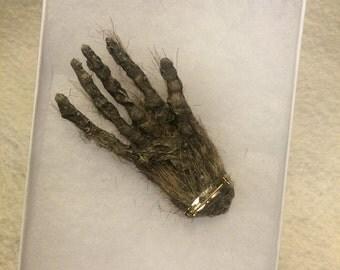 Faux realistic mummified Monkey paw PIN broach talisman sideshow gaff movie prop cabinet of curiosity  ornament