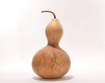 Large Bottle Gourd, Natural Gourd