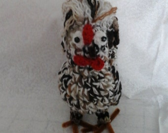 Polish Chicken  Rooster