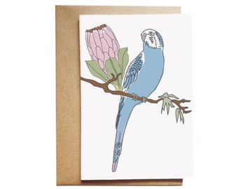 Budgie and Protea Australiana card