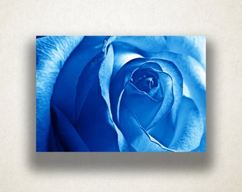 Blue Rose Canvas Art, Rose Close Up Wall Art, Rose Canvas Print, Close Up Wall Art, Photograph, Canvas Print, Home Art, Wall Art Canvas