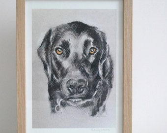 SALE Labrador Print. Black Labrador Art print. Giclee printed on 255gsm Somerset Velvet Watercolour paper by Bethany Moore