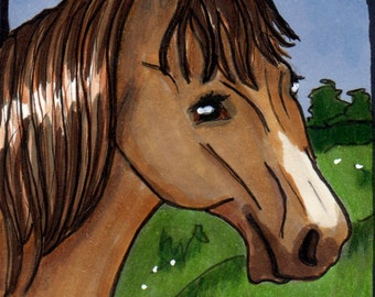 ACEO - Original Art Card - Brown Horse