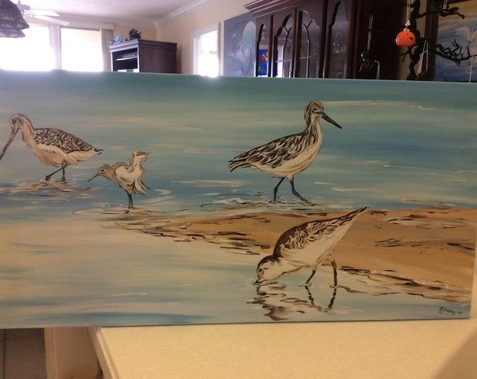 Shorebirds at the Beach