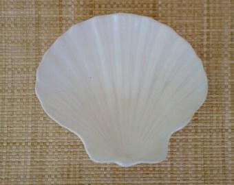 Small White Seashell Dish - Handmade Pottery