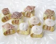 Seashell & Sand Dollar Napkin Rings - Set of 9 Beach house Cottage