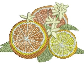 orange, lemon and grapefruit Machine Embroidery Design
