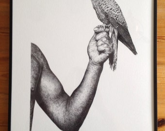 A Hawk in the Hand