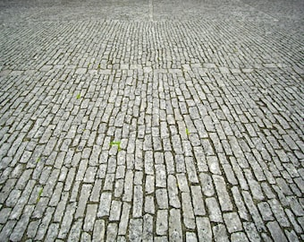 Cobblestones (printed photo)