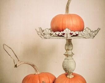 Pumpkin - Autumn - Fall - Thanksgiving - Harvest - Orange - Cream - Fall Decore - Moderen Fall