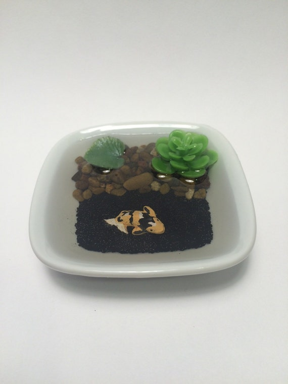 Miniature resin pond with koi fish in square ceramic dish for Resin koi fish