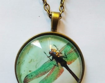 dragonfly butterfly picture pendant pendant necklace