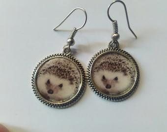 Hedgehog earrings kawaii animal