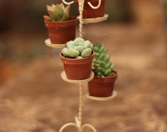 Mini Succulent Tier Plant Stand