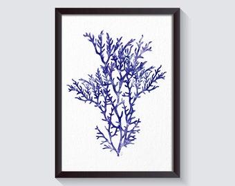 Coral Art Print Blue Sea Coral Print Coral Wall Art Coral Print Sea life print Blue White Coral Reef Art Nautical Home Decor Coastal Decor