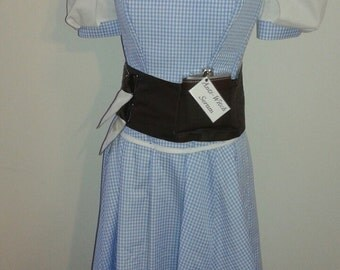 Steampunk Wizard of Oz Dorothy Costume Set