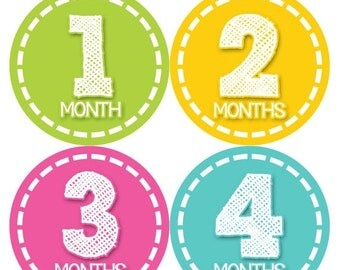 Monthly Baby Stickers Baby Month Stickers Baby Girl Monthly Shirt Stickers Monthly Baby Sticker Girl Baby Shower Photo Prop Milestone 373