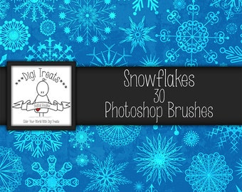20% OFF Snowflakes Photoshop Brush Set (30 brushes) High Quality ~ Instant Download.
