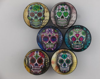 Set of 6 Sugar Skull Cabinet Knobs