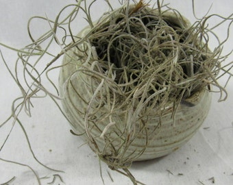 NC Pottery Planter Indoor Outdoor Speckled