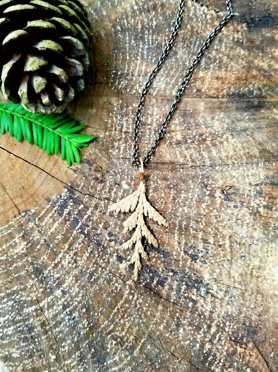Cedar Leaf and Hexagon Cast Bronze Necklace with Chain