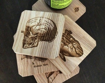 Oak Wooden Anatomy Coasters, Medical Coasters, Gift for Doctor or Nurse