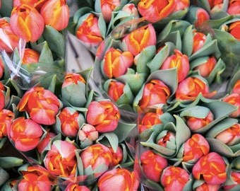 London Photography - Columbia Road Flower Market Print - Orange Tulips - Flower Photography