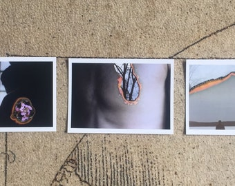 "Three print 5x7"" series"
