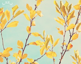 """Discounted 8x10"""" fall leaves photo print - autumn, yellow, sky, september, october, inventory sale"""