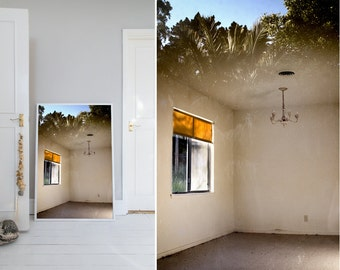 Photograph, California, Landscape, Reflection, Window, Door, Tree, Home decor, Wall art, Home, Minimal, Print, Photo, Art