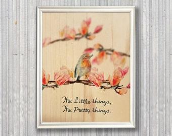 A little bird 06