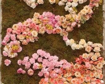Rose Garden Photo Backdrop