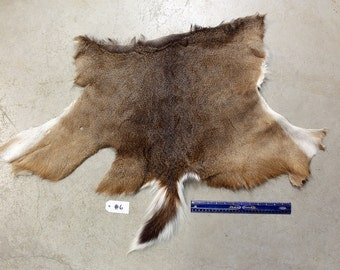 Soft Tanned Whitetail Deer Half Hide #6