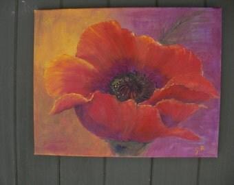 Poppy Oil Painting